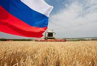Vedomosti: Russia may abandon grain export quotas